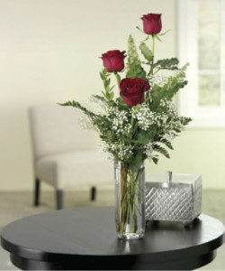 3 Roses in a bud vase with babies breath