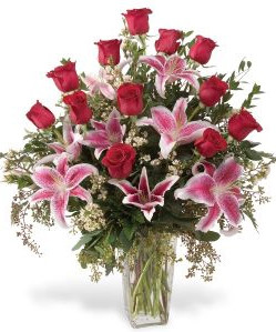 Deluxe red rose and stargazers