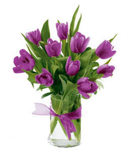 10 Purple tulips in a cylinder vase