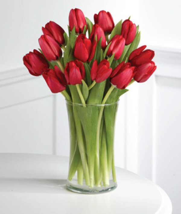 15 Tulips in a cylinder vase