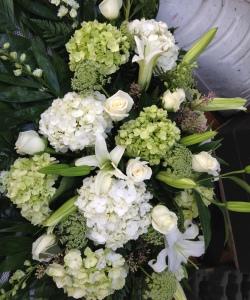 funeral hydrangea